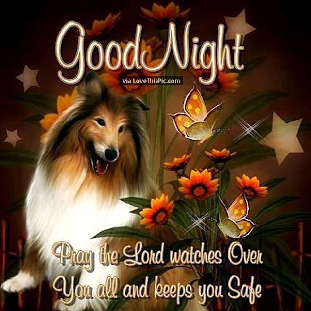Good Night Pray The Lord Watches Over You Pictures, Photos