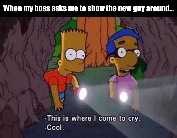When My Boss Asks Me To Show The New Guy Around Pictures