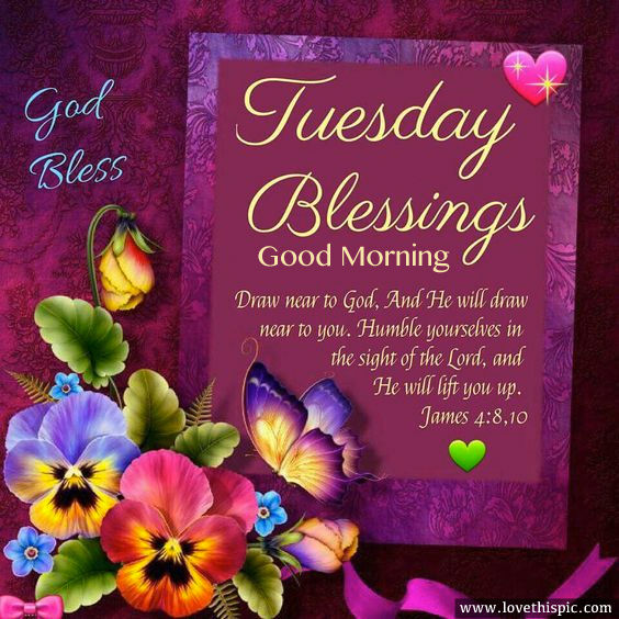 Good Morning Tuesday Blessing Images : Tuesday blessings good morning pictures photos and