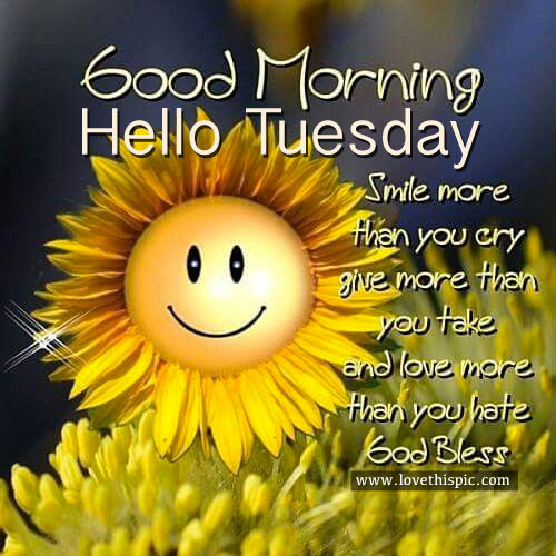 Good Morning Hello Tuesday Pictures Photos And Images