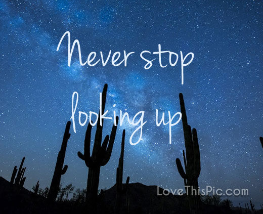 Never Stop Looking Up Pictures Photos And Images For