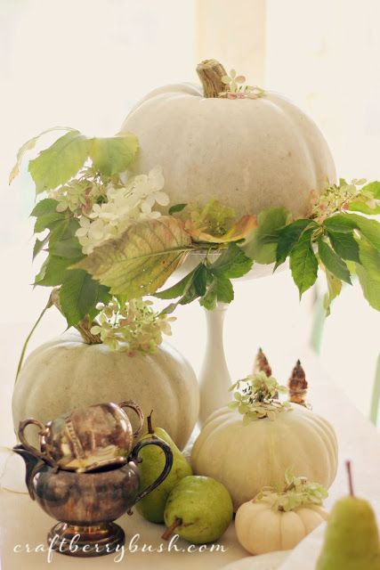 White pumpkins pears table centerpiece pictures photos