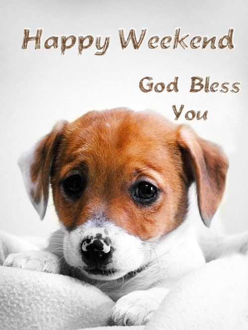 Happy Weekend, God Bless You Pictures, Photos, and Images