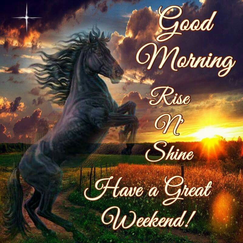 Good Morning Rise Amp Shine Have A Great Weekend Pictures