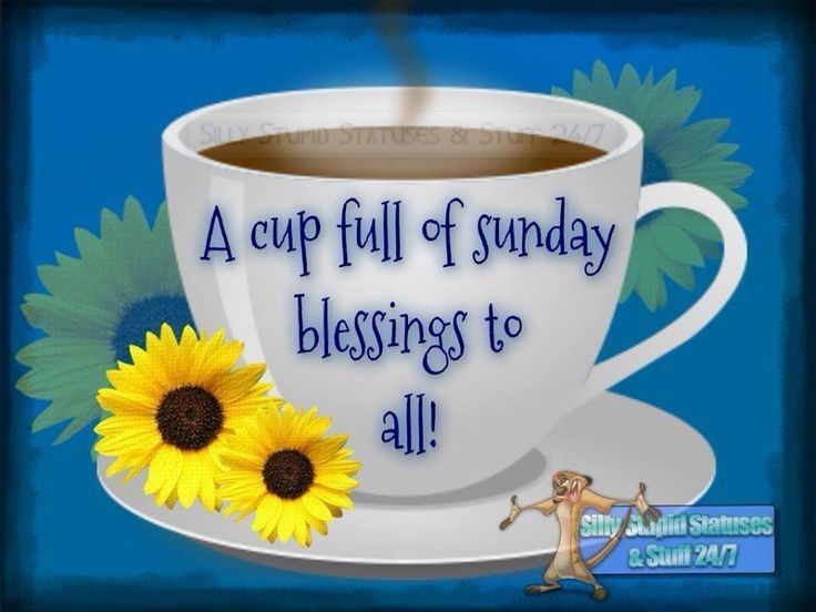 A Cup Full Of Sunday Blessings To All Pictures Photos