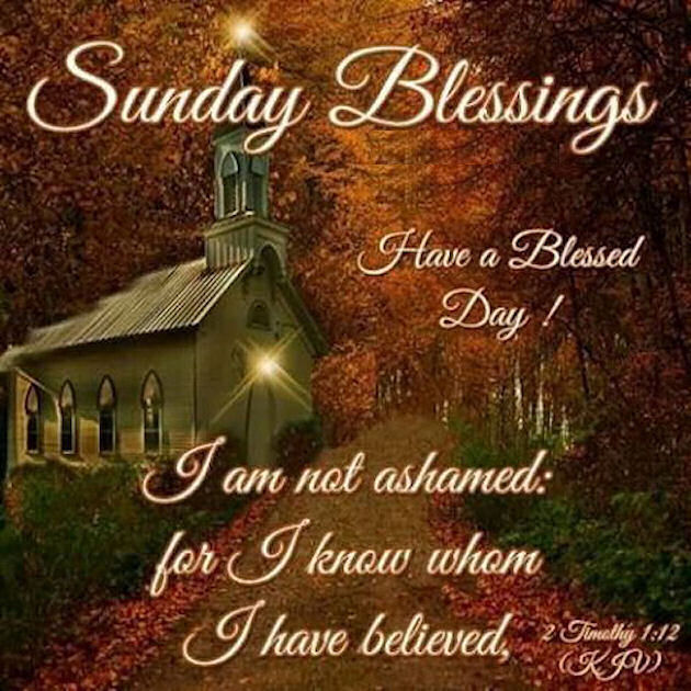 Sunday Morning Religious Quotes: Sunday Blessings Have A Blessed Day With Bible Quote