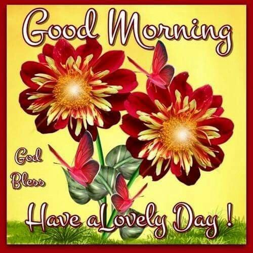Good morning god bless have a lovely day pictures photos and good morning god bless have a lovely day m4hsunfo