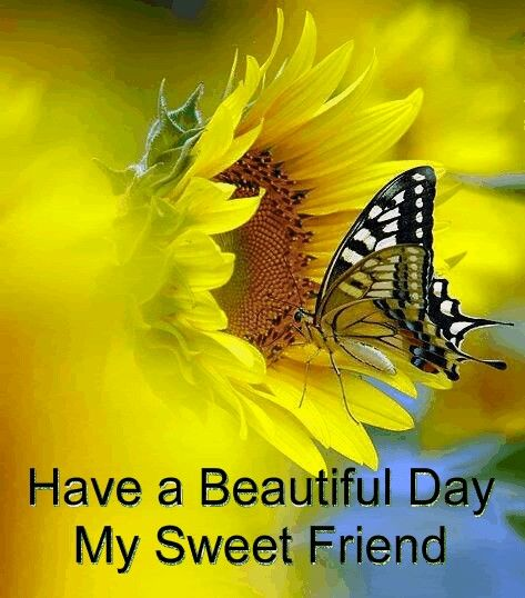 Good Morning My Beautiful Friend Quotes: Have A Beautiful Day, My Sweet Friend Pictures, Photos
