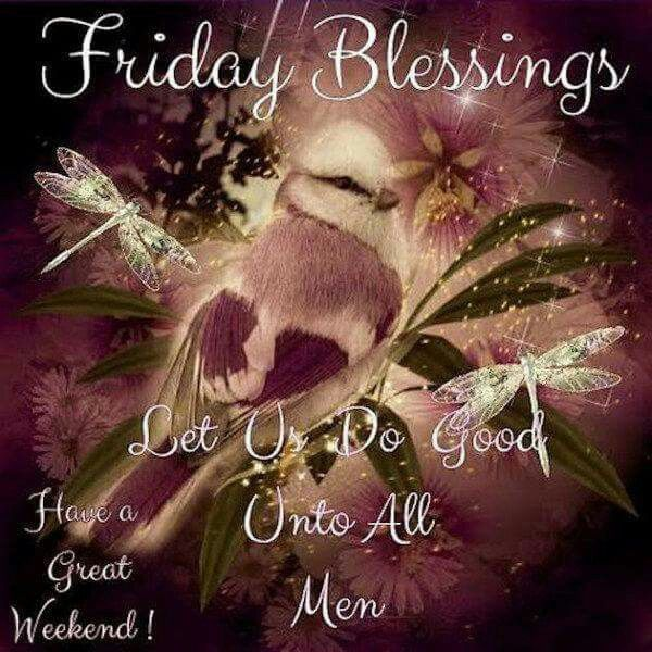 Funny Quotes About Friday Weekend: Friday Blessings, Have A Great Weekend Pictures, Photos
