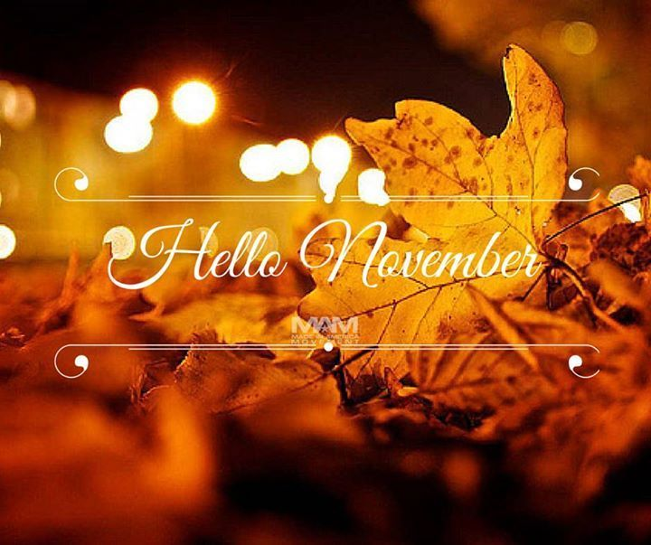 Hello November Pictures Photos And Images For Facebook
