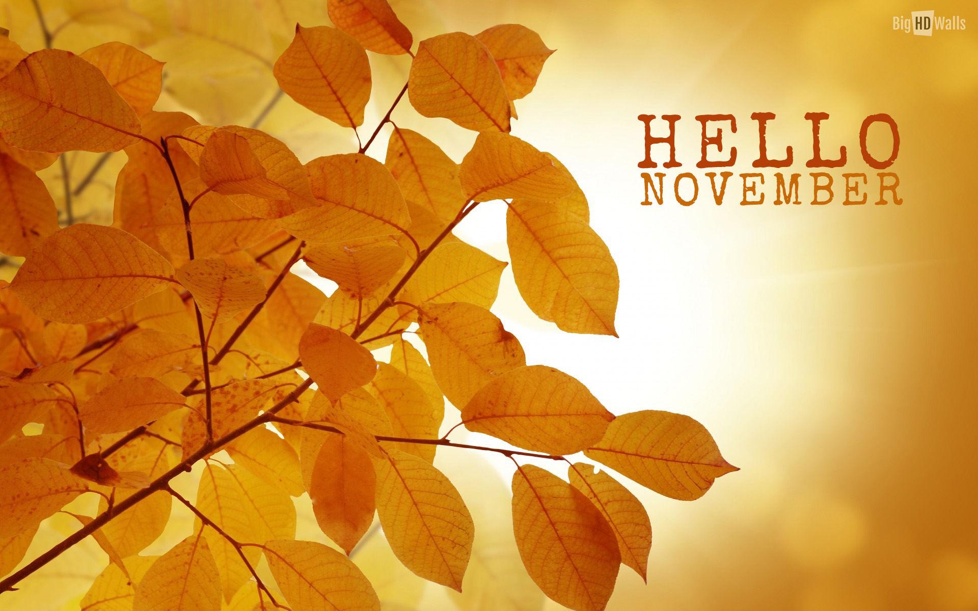 hello november itsnasb - photo #6