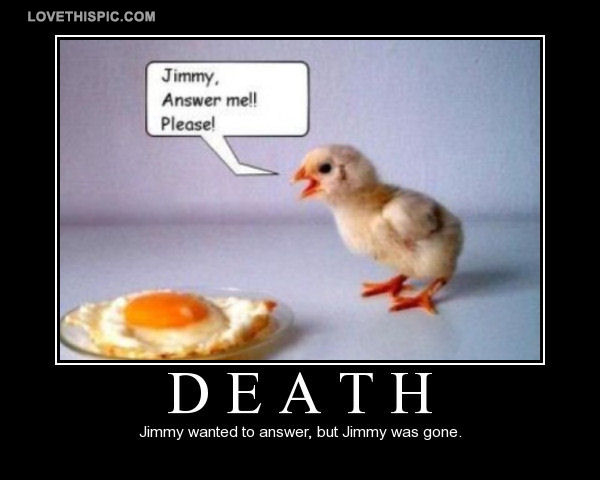 Funny Death Quotes Death Pictures, Photos, and Images for Facebook, Tumblr, Pinterest  Funny Death Quotes