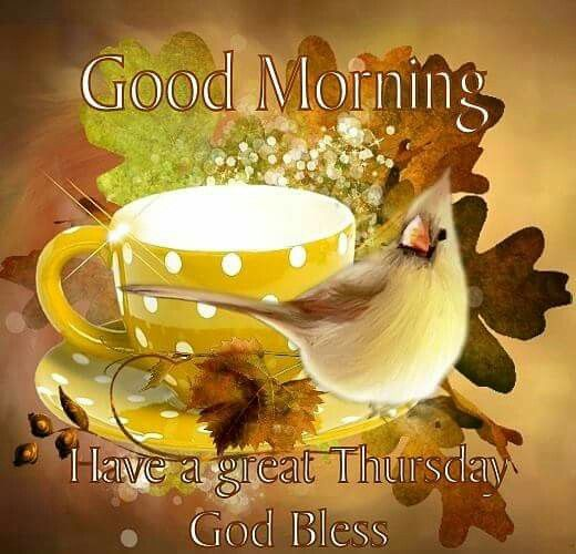 Image result for good morning have an amazing thursday