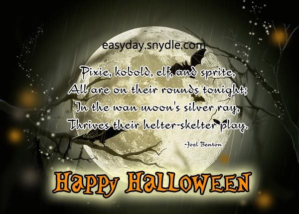 Captivating Moon Light Scary Halloween Quote. At December , 2017. Happy Halloween  Pictures, Photos, And Images For Facebook, Tumblr, Pinterest,.