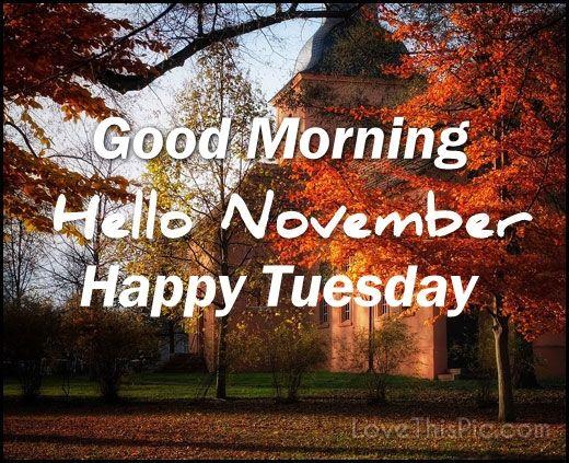 Attrayant Good Morning Hello November Happy Tuesday