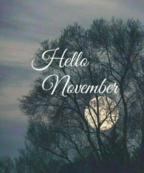 Hello November Pictures, Photos, and Images for Facebook