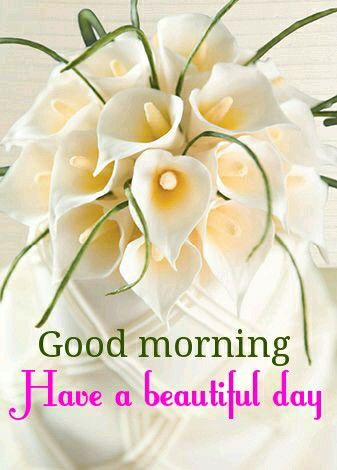 Good Morning Have A Beautiful Day Pictures Photos And