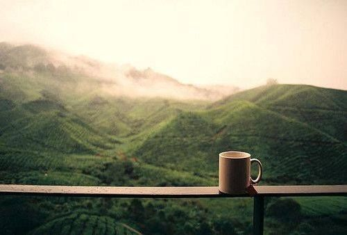 Cup Of Coffee Outdoors