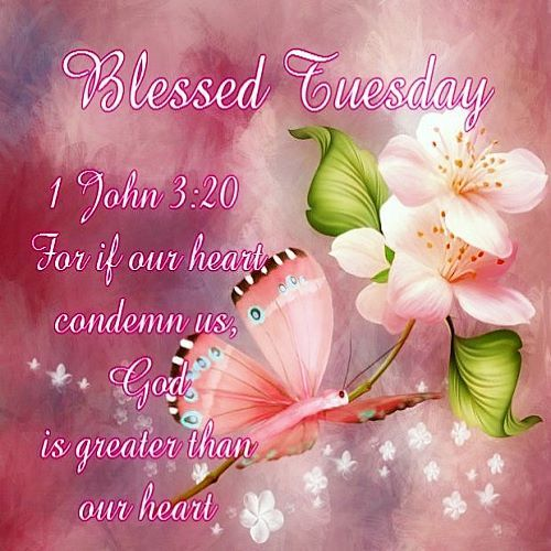Blessed Tuesday Pictures, Photos, and Images for Facebook ...