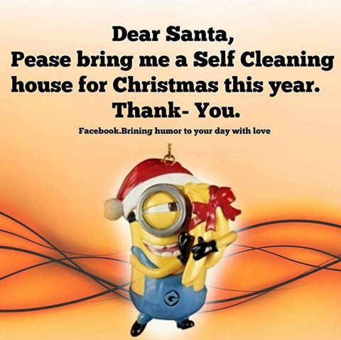 Dear Santa Bring Me A Self Cleaning House This Year