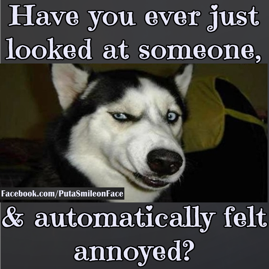 Funniest Quotes About Being Annoying: Have You Ever Looked AT Someone And Were Automatically