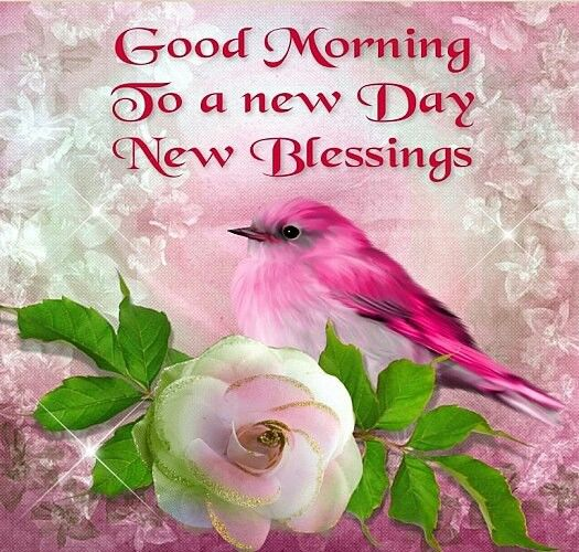 Good Morning To A New Day New Blessings Pictures Photos