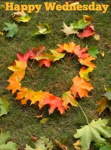 Image result for autumn wednesday images