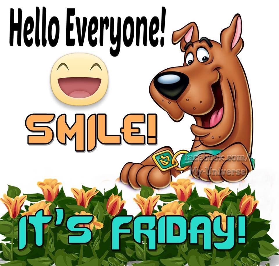 Its Friday Funny Quotations: Hello Everyone Smile It's Friday Pictures, Photos, And