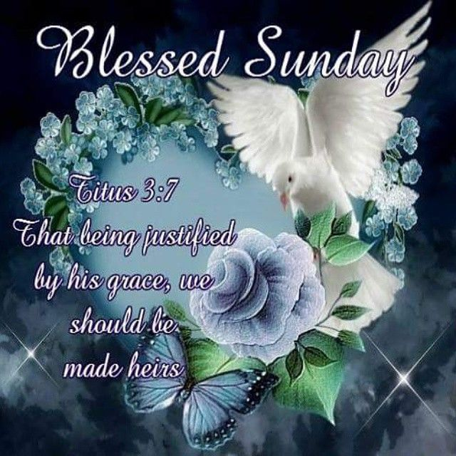 Blessed Sunday Pictures Photos And Images For Facebook