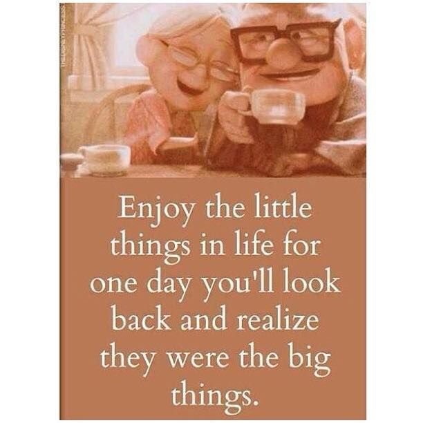 Funny Quotes About Things In Life: Enjoy The Little Things In Life, Because One Day You'll