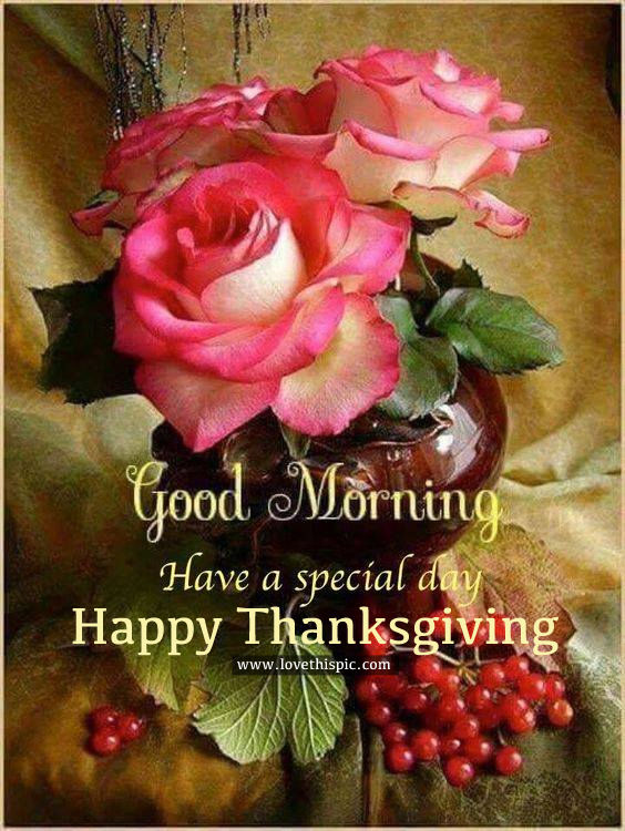 Good Morning, Have A Special Day, Happy Thanksgiving