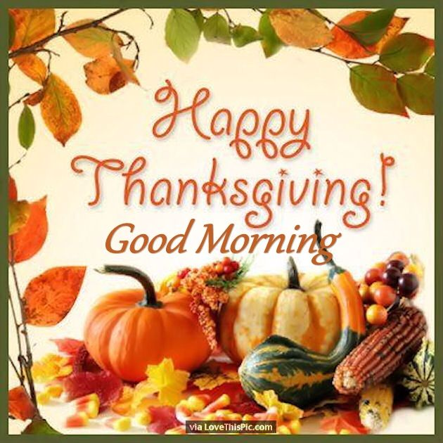 Festive Happy Thanksgiving Good Morning Quote Pictures