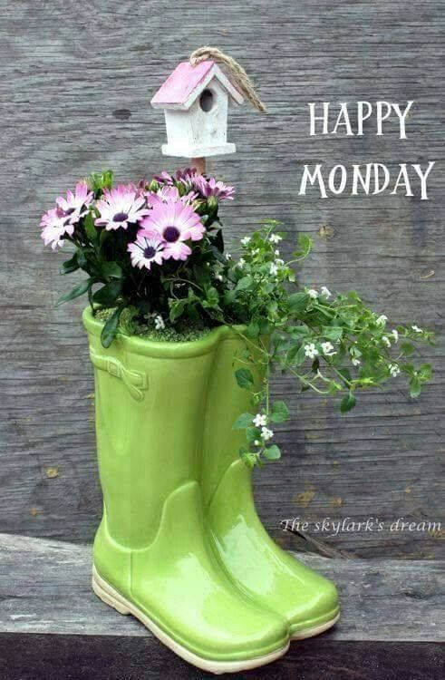 Happy Monday Pictures, Photos, and Images for Facebook