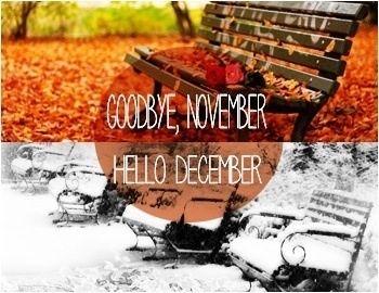 goodbye november hello december autumn to winter quote