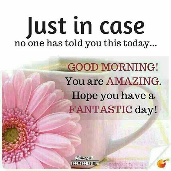 No You Re Amazing: Just In Case No One Has Told You This Today...Good Morning