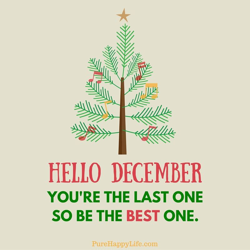 Hello December You're The Last One So Be The Best One ...
