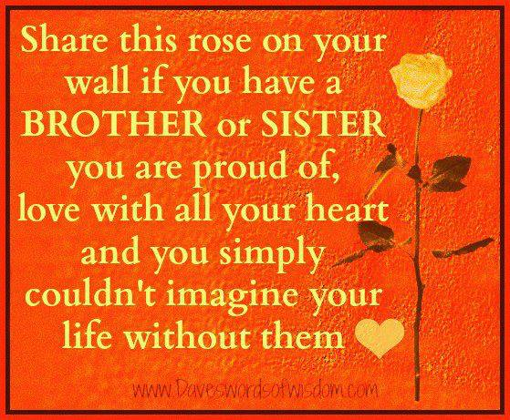 Share This Rose On Your Wall If You Have A Brother Or