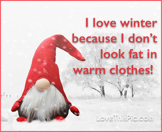 68 Best Funny Quotes Images On Pinterest: I Love Winter Pictures, Photos, And Images For Facebook