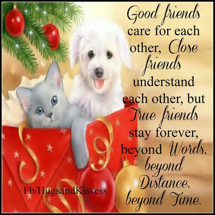 Good Friends Care For Each Other Pictures, Photos, And