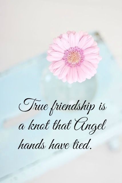 True Friendship Is A Knot That Angel Hands Have Tied Pictures Photos And Images For Facebook