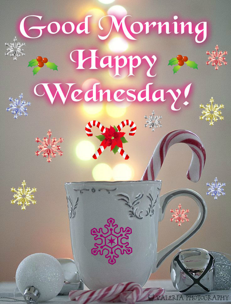 Good Morning Wednesday Image : Good morning happy wednesday pictures photos and images