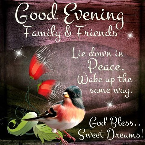 Good Evening Family Friends Pictures Photos And Images For