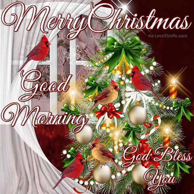Merry Christmas Good Morning God Bless Pictures, Photos