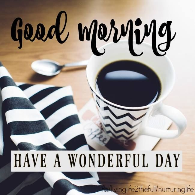 Good Morning Have A Wonderful Day Pictures Photos And Images For Facebook Tumblr Pinterest