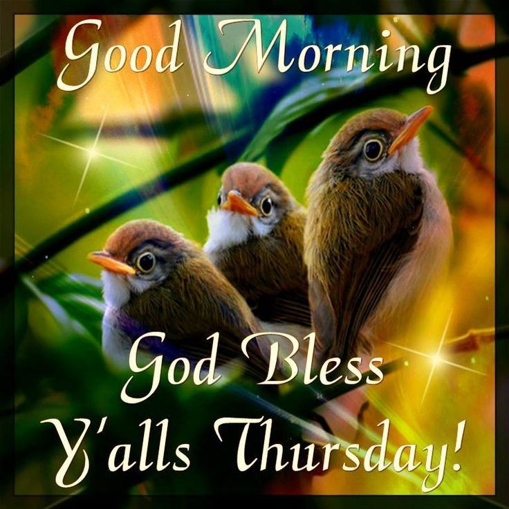 Good Morning, God Bless Y'alls Thursday Pictures, Photos