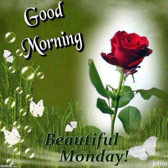 Good Morning, Beautiful Monday Pictures, Photos, and Images