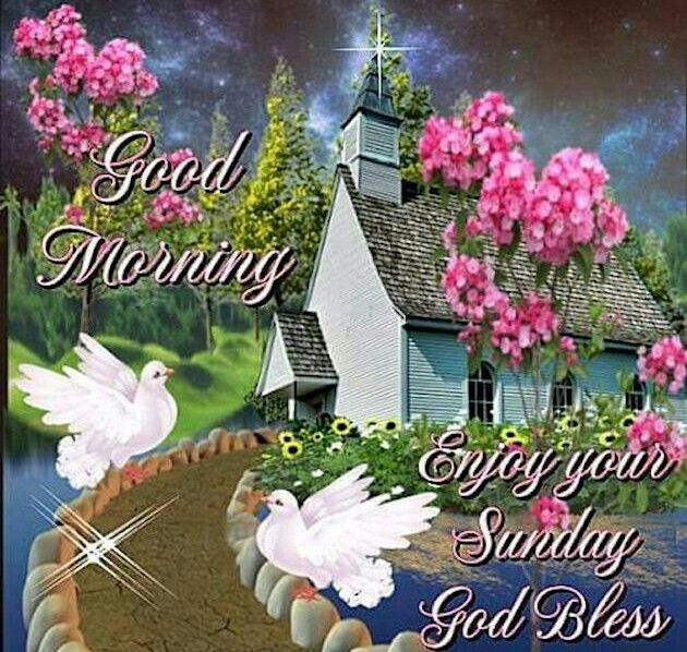 good morning enjoy your sunday god bless pictures