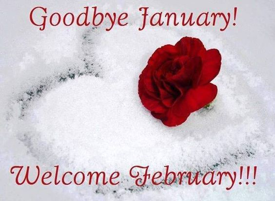 Image result for Hello February Goodbye January