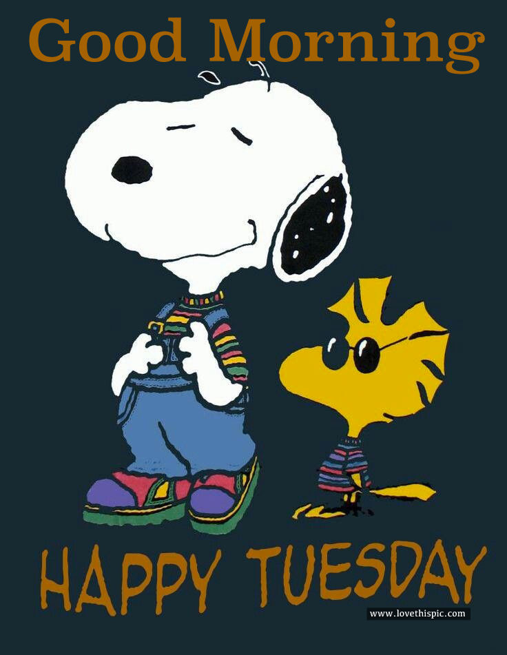 Good Morning Snoopy Wednesday : Good morning happy tuesday pictures photos and images