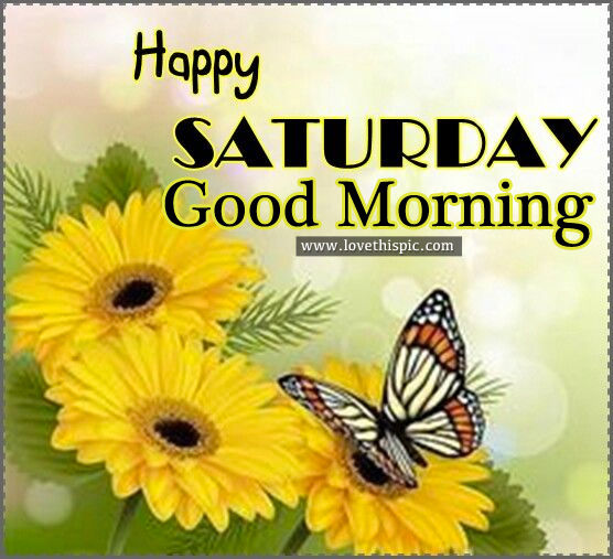 Good Morning Saturday Morning : Happy saturday good morning pictures photos and images